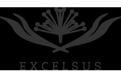 Excelsus